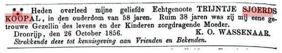 koopaltrijntjesjoerds1856