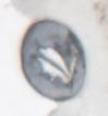 sulver-6-4